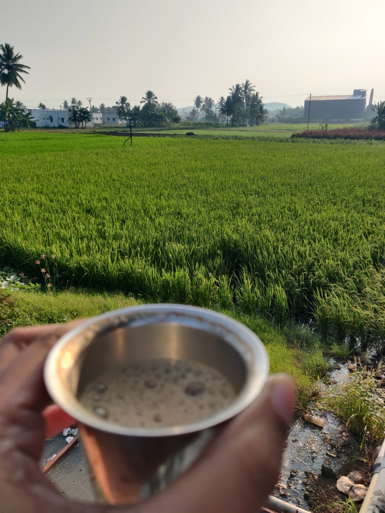 Holding a cup of coffee in hand with a view of beautiful fields in front.